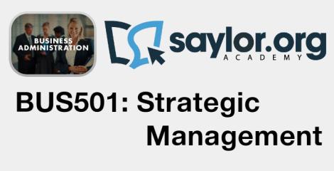 Saylor_BUS501