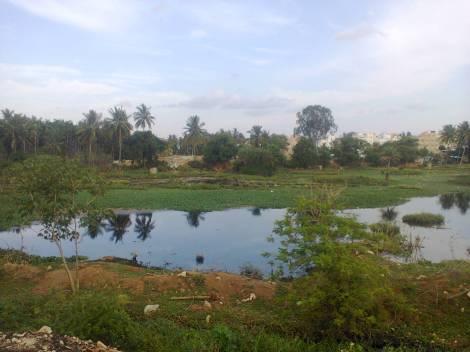 Doddabidirakallu lake